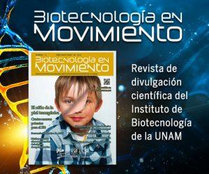 Revista-IBT-Agosto