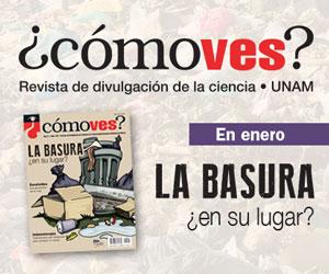 comoves_banner-enero2019