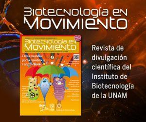 Revista-IBT-diciembre