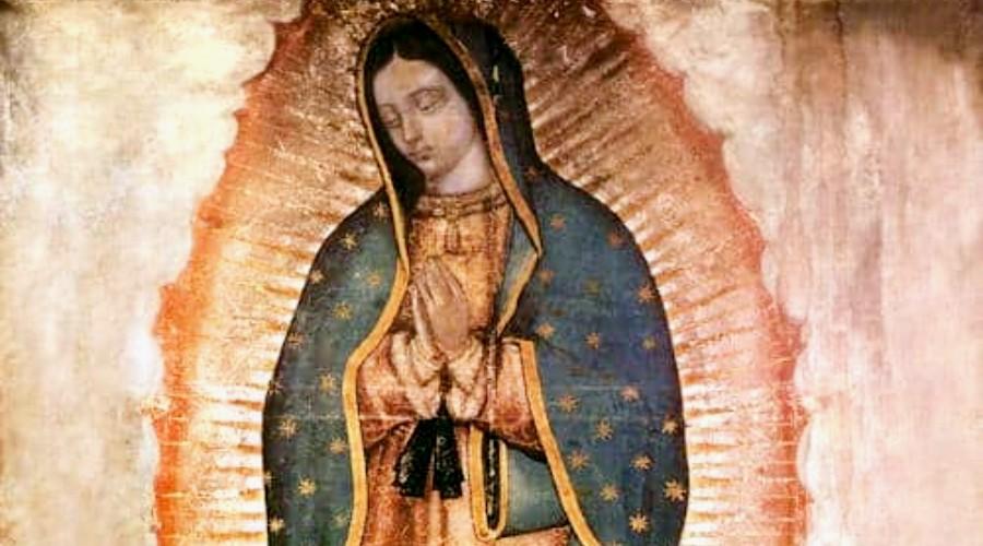Virgen De Guadalupe La Devoción Cristiana Que Más Crece En