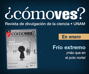 comoves_banner-enero2020-300x250